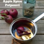 DIY Simmering Apple Potpourri – 3 Recipes for an Amazing Smelling House!