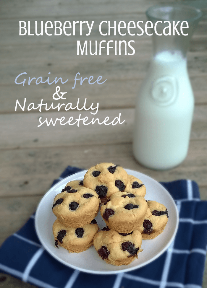 blueberry cheesecake muffins, grain free and naturally sweetened